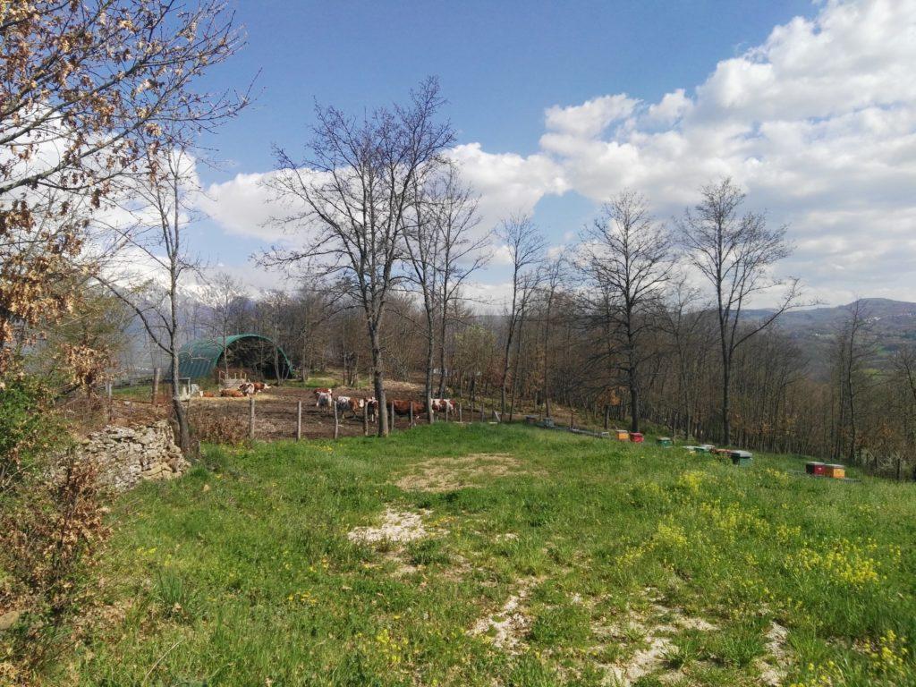 Azienda Agricola Fantusi Fabio Di Amatrice